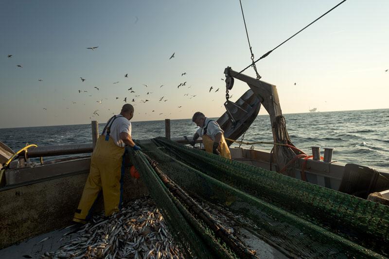 Inizia il fermo pesca anche a Cesenatico