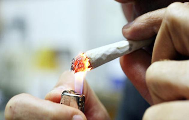 Danni da marijuana, volontari sabato davanti al Liceo