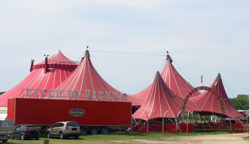 """Circo di Vienna: """"Noi restiamo e aspettiamo il sindaco"""""""