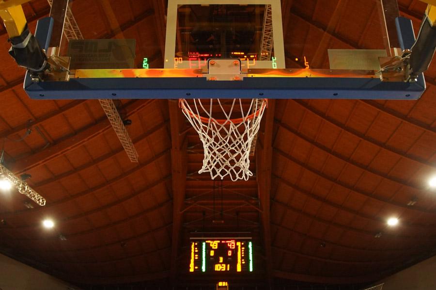 tigers basket
