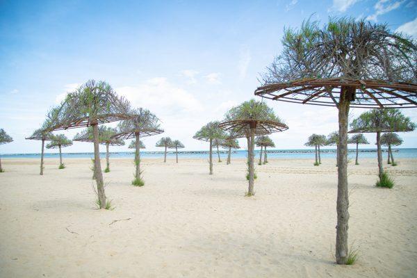 spiaggia tamerici green